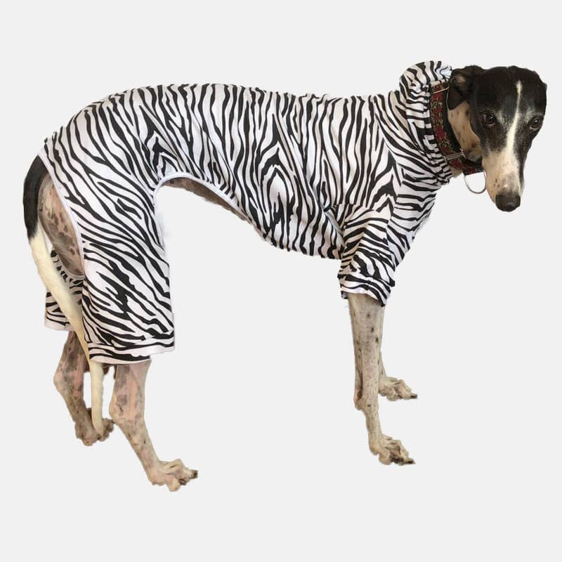Zebra patterned Greyhound Pyjamas/Sleep Suit with Hood and legs